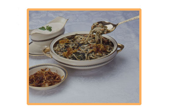 Noodle Doup Dish - Orange Border
